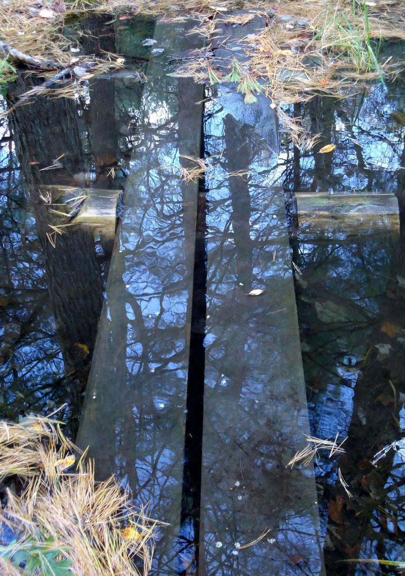 Jessamyn Smyth-Sunken Bridge Wendell State Forest